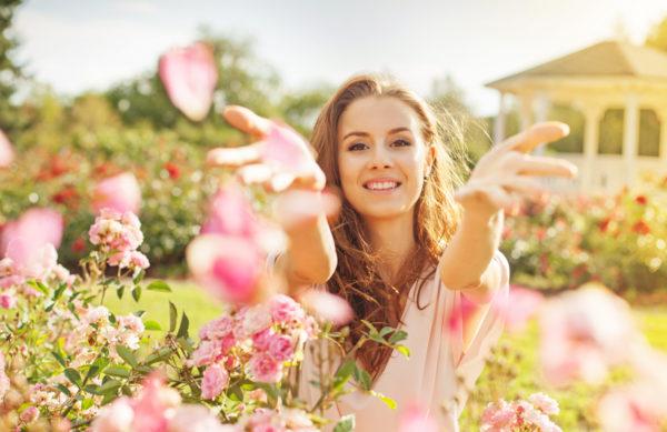 Rosen - Königliche Schönheiten